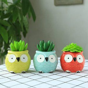 🌻NEW🌻 3 Owl Succulent Plant Pots, Blue Green Red